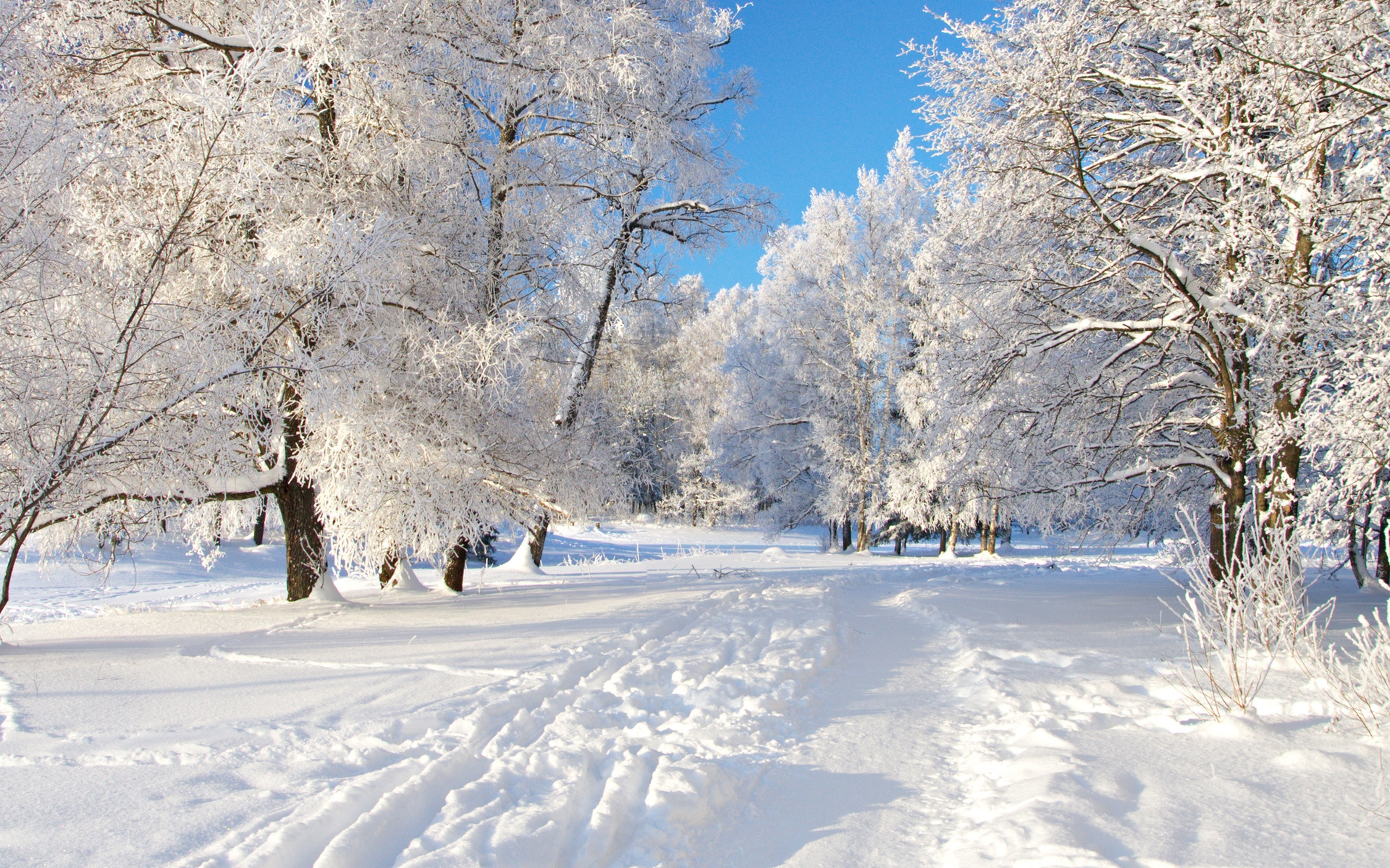 winter-scenery-18717-19196-hd-wallpapers