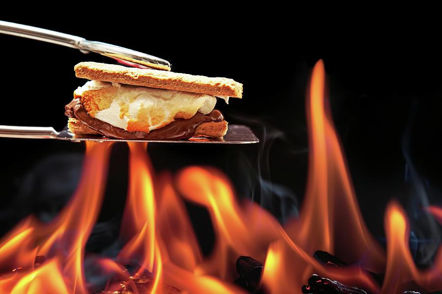 smore-cooking-over-campfire-susan-schmitz